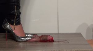 Lady Latisha Extreme Sadistic Heel Insertion & Cruel Trample Cock Crushing Clip 1 – Cut of Two Views! – High Heels Goddess – Lady Latisha