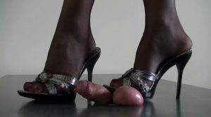 PRESSED COCK – ABALLS AND COCK TRAMPLE
