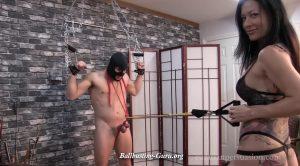 Ballbusting Fitness Test – Vancouver Kinky Dominatrix