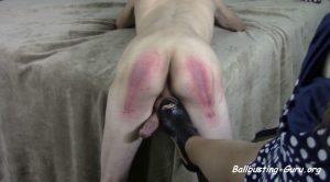 Oink, Piggy, Oink! – Ms Kimi busts ur balls