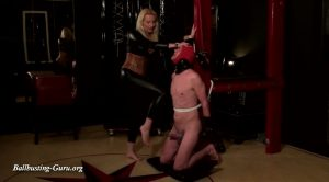 Mean Mrs. Tess Part 3 Heavy ball busting – Mistress Tess Sm4life