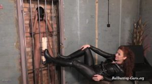 Mistress Lady Renee – Ball abuse cage