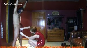We Love Ballbusting – Record Breaking Sacrifice Part 4 and 5! Second Pair Of Brutal Spikes!