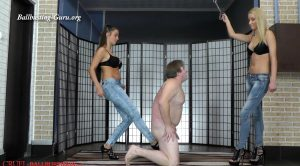 The slave is K.O. – Mistress Ariel, Mistress Amanda