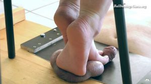 UselessBallsUnderMySexyFeet – Useless Balls Under My Sexy Feet – Boot Heel Worship Cbt Humiliation
