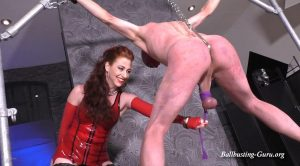 Mistress Lady Renee – Predicament punishment