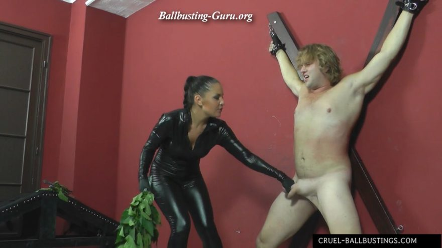 Are mz lisas domination for