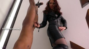 Mistress Lady Renee – Hung boot slave
