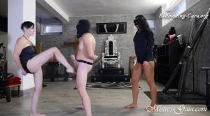 MISTRESS GAIA – BALL BUSTING DOUBLE TREATMENT
