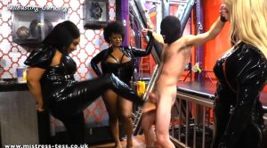 Triple Threat Ballbusting – Mistress Tess UK Clip Store